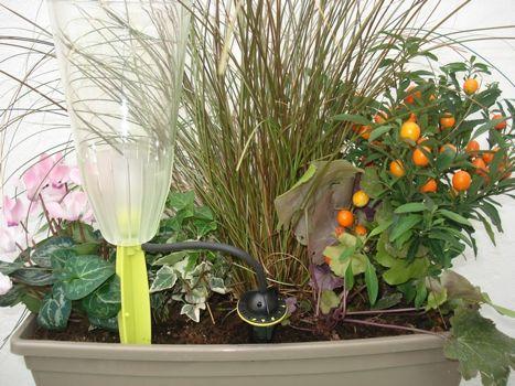 comment arroser vos plantes pendant vos vacances. Black Bedroom Furniture Sets. Home Design Ideas
