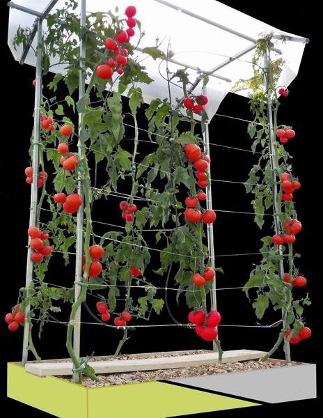 Atoutloisir magasin de jardinage serre de jardin arrosage iriso abris de jardin serre tunnel - Protection toit abri de jardin ...