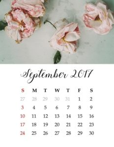 Jardin que faire au mois de septembre nos conseils - Que faire au jardin en septembre ...