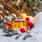 Que faire au jardin au mois de décembre ?