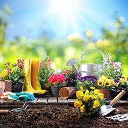 Que faire au jardin en avril ?