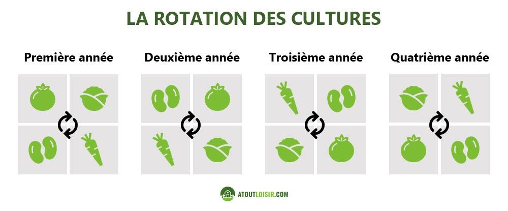 schéma-explicatif-rotation-des-cultures