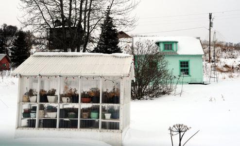 serre-de-jardin-hiver