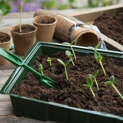 La gamme se compose de mini-serre et petits châssis pour aider au forçage de tous types de plantations (fruits, légumes, fleurs). La mise en place de votre mini-serre est instantanée, ses éléments empilables sont très faciles à déplacer et à ranger.
