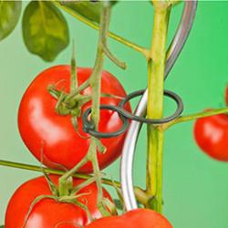Les cordes et lienssont indispensables au jardin au fur et à mesure de la croissance des arbres, plants potagers, plantes vertes, tomates ...