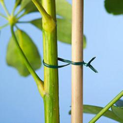 Retrouvez toutes nos solutions de fixations pour le jardinage. Nos cordes et liens pour favoriser la croissance de vos plantes et nos tuteurs à tomates, spécialement conçus pour ce type de culture. Un large choix adapté à vos besoins.